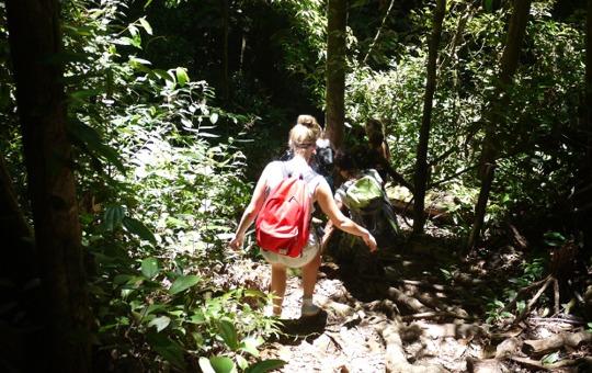 Tours naar het binnenland - Student Inn Suriname